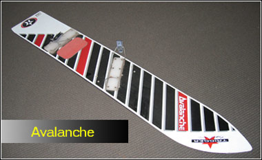 20081001_avalanche