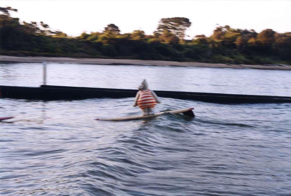 hippo-surf